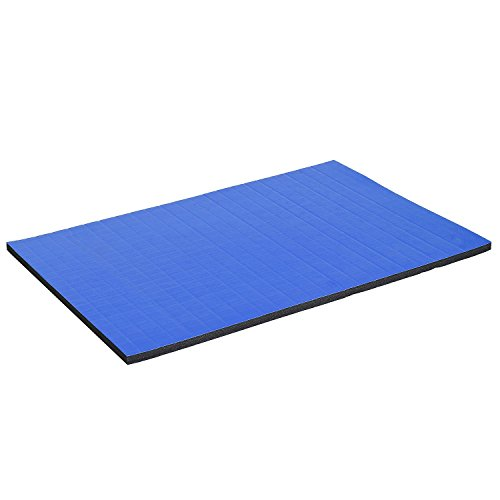 Multi-Use Roll Out Gymnastics Yoga Wrestling Mat 6'x4' Cheerleading Tumbling Gym Mat With Ebook by MRT SUPPLY