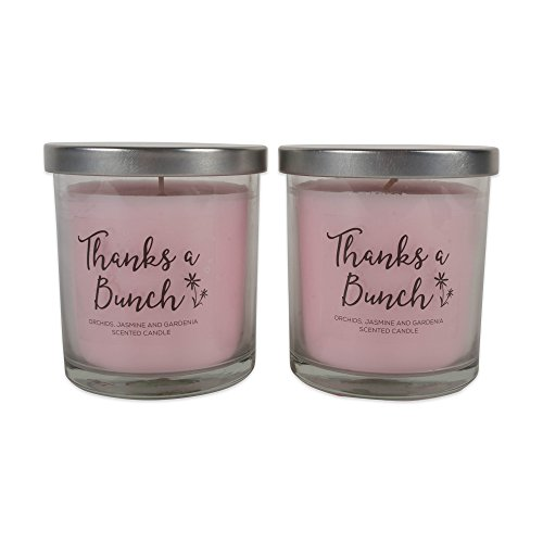 Home Traditions Single Wick Evenly Burning Highly Scented Jar Candle, Set of 2  (8 Oz Each) - Thanks A Bunch!