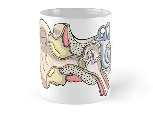 Human Inner Ear Anatomy Illustration Mug - 11oz Mug - Best gift for family friends