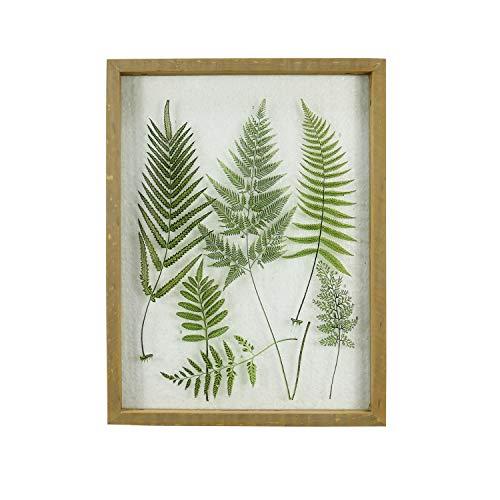 NIKKY HOME 12 x 16 Wood Framed Glass Plaque Fern Botanical Wall Art Print
