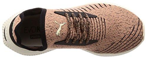 Coup Puma De Argile Evoknit Avide Chaussure rEXEqTg