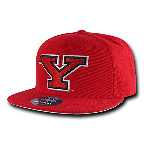 Youngstown State University Penguins NCAA Flat Bill Snapback Baseball Cap Hat