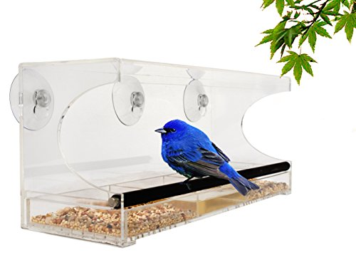 AvianBay Acrylic Window Bird Feeder with Sliding Drawer Seed, Water Tray, Drain Holes, Rubber Covered Metal Perch, Suction Cups and Box, Large Image