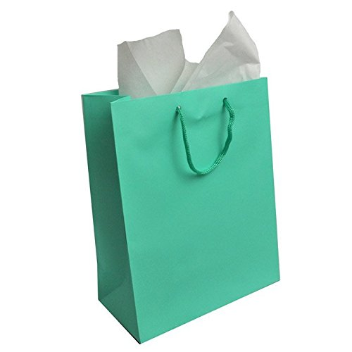 Large Aqua Gift Bags Pack of 100