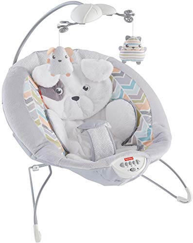 Fisher-Price Sweet Snugapuppy Dreams Deluxe (Fisher Price Baby Papasan)