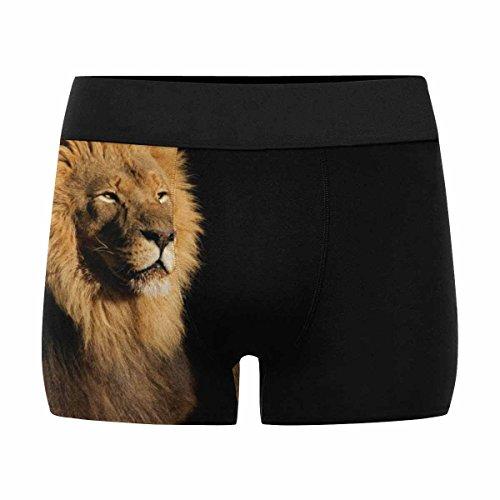 InterestPrint Boxer Briefs Men's Underwear Male African Lion South Africa M by InterestPrint