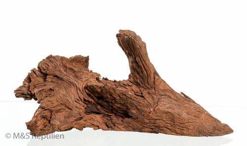 Racine De Mangrove–Taille moyenne–20–30cm M&S Reptilien