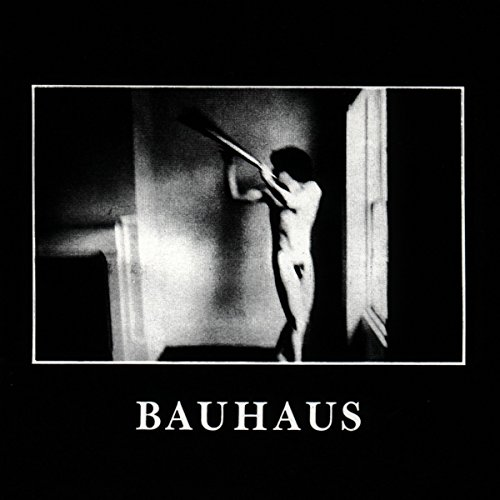 Bauhaus: In The Flat Field (Audio CD)
