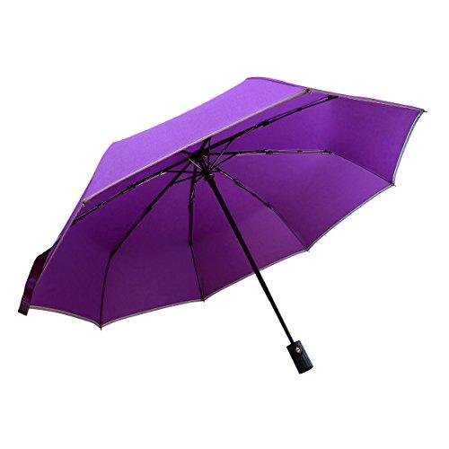 Windproof Travel Umbrella, Bemece Compact Lightweight Foldable Umbrella for Men Women, Auto Open Close