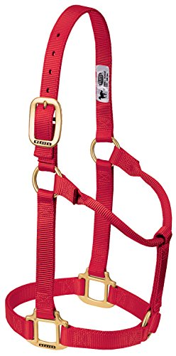 Weaver Leather Original Non-Adjustable Nylon Horse Halter, Large, Red (Red Horses Leather)