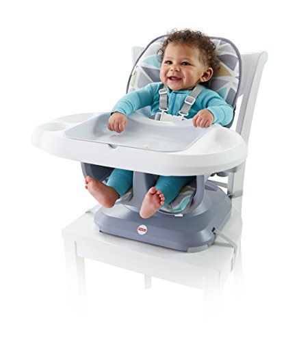 Fisher-Price SpaceSaver High Chair by Fisher-Price (Image #1)