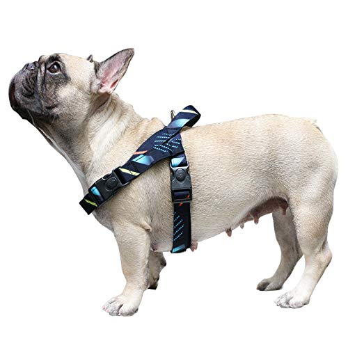 iChoue No Pull Dog Harness Easy Wear Pet Adjustable Comfy Neoprene Padded Lightweight Harnesses with Handle fit Chest Girth 19.5 to 27.5