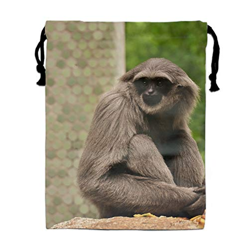 - Animal Gibbon Monkeys Zoo Primate Shoe Storage Bags with Drawstring for Men and Women Perfect for Travel