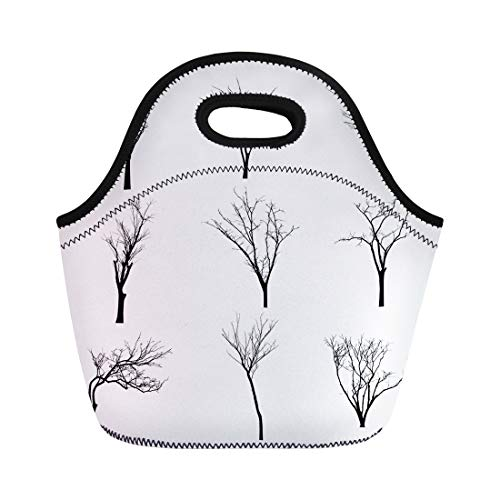 Semtomn Lunch Bags Halloween Branch Black Silhouette of Bare Tree Shadow Winter Neoprene Lunch Bag Lunchbox Tote Bag Portable Picnic Bag Cooler Bag -