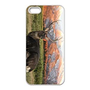 The Attractive Deer Picture Hight Quality Plastic Case for Iphone 5s