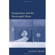 Imagination and the Meaningful Brain (Philosophical Psychopathology)