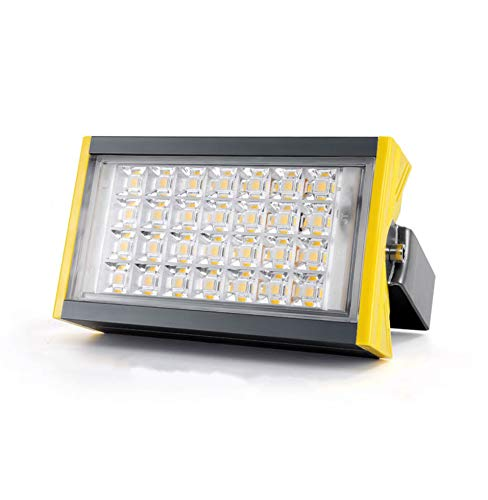 Csndice Home LED Faretto Da Esterno,Lampada Da Giardino Per Esterni Da Giardino Con Riflettore Impermeabile IP65 66 (colore   Luce bianca-100W)