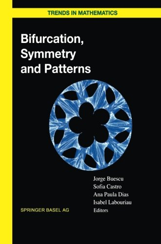 Bifurcation, Symmetry and Patterns (Trends in Mathematics)