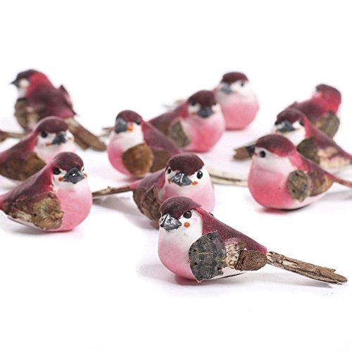 - Factory Direct Craft Group of 12 Vibrant Pink and Burgundy Colored Artificial Mushroom Woodland Birds for Crafting, Creating and Displaying
