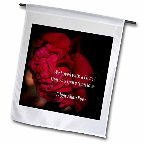3dRose WhiteOaks Photography and Artwork – Inspirational – More Than Love is an inspirational quote by Edgar Allan Poe – 18 x 27 inch Garden Flag (fl_265330_2)