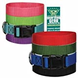 Guardian Gear Custom Personalized Embroidered Dog Collars Brand