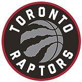 Simple Modern Toronto Raptors 32oz Summit Water