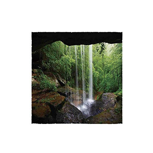 C COABALLA Natural Cave Decorations Durable Square Small Towel,Still Waterfall in The Forest in Northern Alabama Habitat Ecosystem Scenery for Bathroom,13