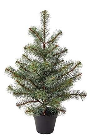 Kleiner Tannenbaum Im Topf.Ikea Fejka Mini Weihnachtsbaum Kunstlich Klein Mini