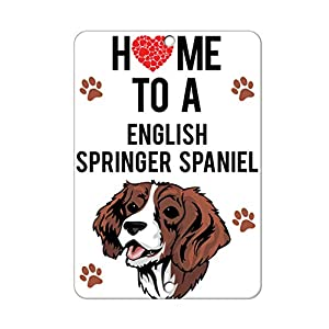 Aluminum Metal Sign Funny Home to English Springer Spaniel Dog Informative Novelty Wall Art Vertical 12INx18IN 21