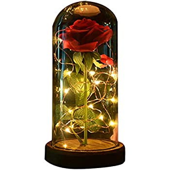 Amazoncom Sexyrobot Beauty And The Beast Red Rose Silk Flower