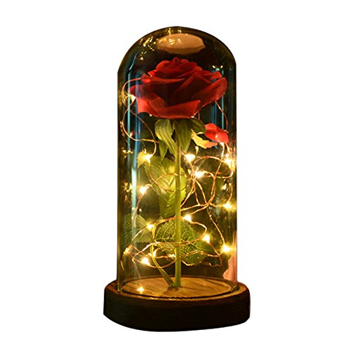 - sexyrobot Beauty and The Beast Rose, Enchanted Red Silk Flower with LED Glass Dome for Valentine's Day Mother's Day Christmas Anniversary Birthday Thanksgiving Decoration (1Pcs)