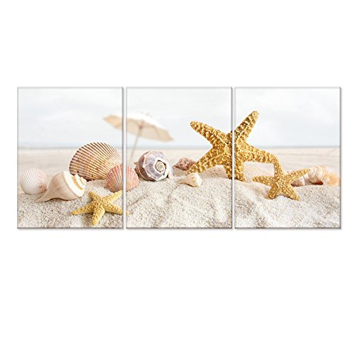 Seascape Canvas Wall Art,Shells Starfish On The Beach Modern Canvas Wall  Art For Home Decor,Framed And Stretched,Easy To Hang