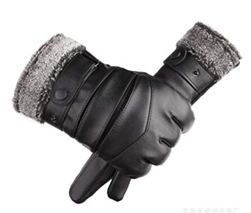 Wen hui Touch Screen Warm and Windproof Cold Waterproof Winter Motorcycle Mens Leather Gloves