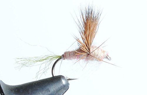 Blue Wing Olive Sparkle Dun Dry Fly, 6-Pack (Hendrickson, 16)
