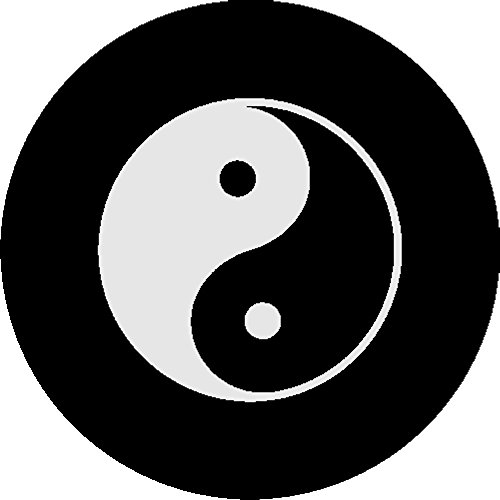 ying yang tire cover - 2