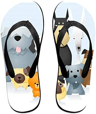 ビーチシューズ 動物 漫画 犬 猫 ビーチサンダル 島ぞうり 夏 サンダル ベランダ 痛くない 滑り止め カジュアル シンプル おしゃれ 柔らかい 軽量 人気 室内履き アウトドア 海 プール リゾート ユニセックス