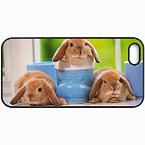 Personalized Protective Hardshell Back Hardcover For iPhone 5/5S, Rabbits Three Sitting Kids Design In Black Case Color