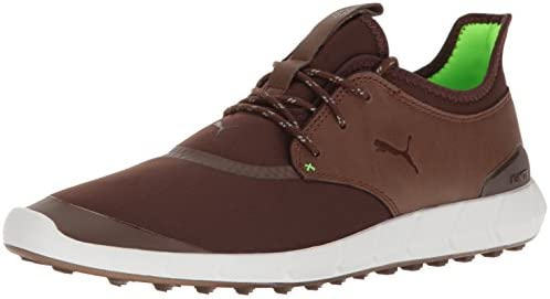PUMA Men's Ignite Spikeless Sport Golf Shoe, Chestnut Green