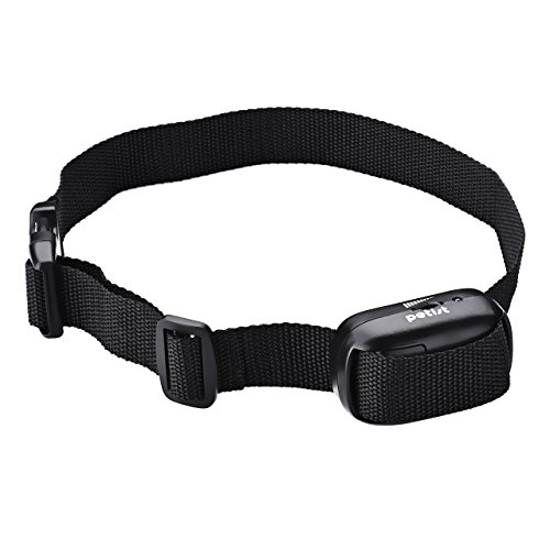 Electronic Small Dog Collar