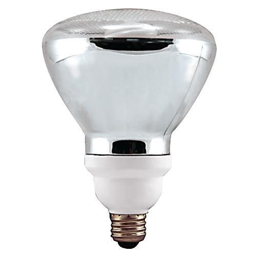 Verilux 23 Watt Natural Spectrum Compact Fluorescent Par38 Outdoor Flood Bulb, Single Pack by Verilux (Par38 Compact Fluorescent Bulb)