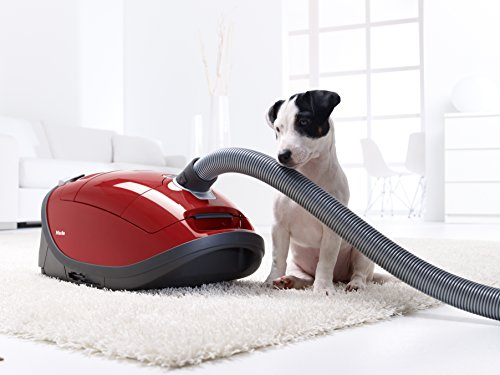 Vacuum Cleaners Dog And Cat Big W