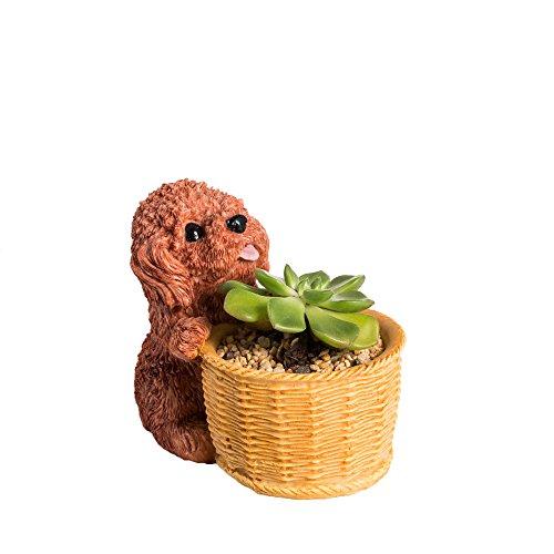 Red Dog Ceramic Design Bowl - Small Plant Planter Indoor Succulent Dog Flower Pot Table Cute Garden Cartoon Windowsill Balcony Decorative Resin Brown Red Teddy Miniature Home Cactus Display Decor Bonsai