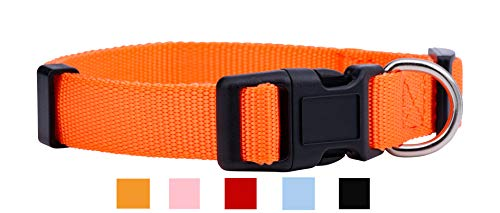 Native Pup Nylon Dog Collar Classic Solid Colors (Small, - Dog Collar Orange