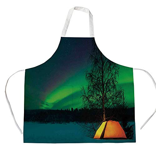 - iPrint Cotton Linen Apron,Two Side Pocket,Northern Lights,Camping Tent Under Magnetic Field Nature Picture,Lime Green Dark Blue Earth Yellow,for Cooking Baking Gardening