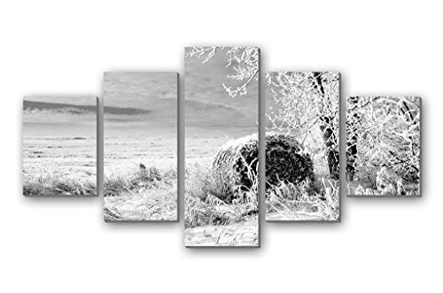 BurgessAlbert The Snow of Winter Wheat Fields - 5 Panels Wall Art Canvas Stretched with Wooden Frame for Home Decor - Ready to Hang (8