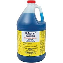Nolvasan Solution Chlorhexidine Diacetate Disinfectant - Gallon
