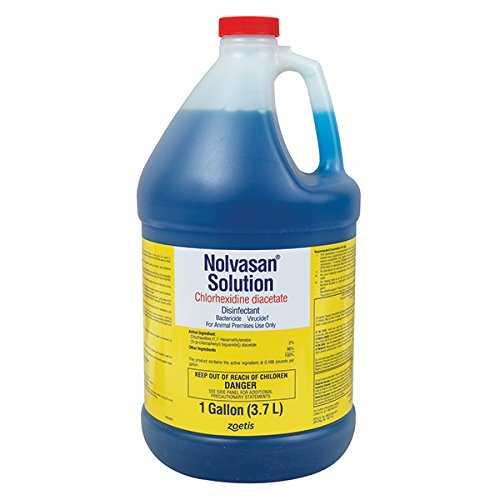 Nolvasan Solution Chlorhexidine Diacetate Disinfectant - Gallon by Fort Dodge