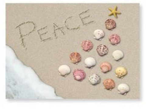 Christmas Cards - Box Set 16 Cards and 16 Envelopes - Peace Written in the Sand - Beach Scene with Seashells in the Sand in the Shape of a Christmas Tree with a Starfish for the Star
