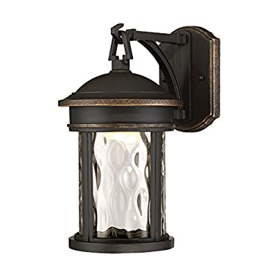 Designers Fountain EV7063-305 16 in. LED Olympic Bronze Outdoor Wall Lantern with Clear Hammered Glass Shade