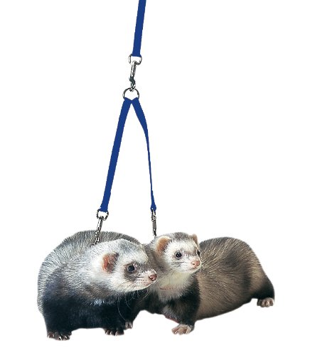 Leads Marshall Ferret - Marshall Ferret Tandem Coupler, Royal Blue
